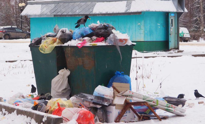 Свалка «мусорных» вопросов. В Рыбинске ищут новые места для контейнерных площадок