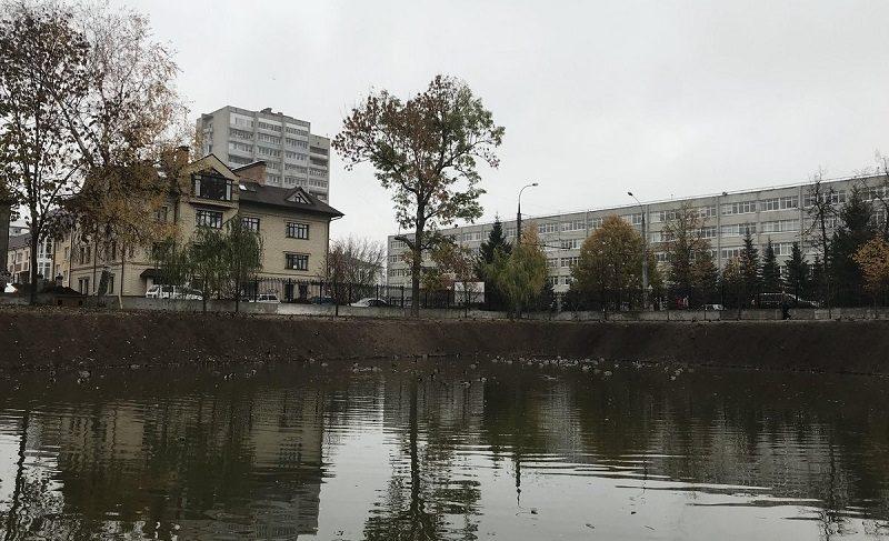 В пруду Карякинского парка поселили новых рыб
