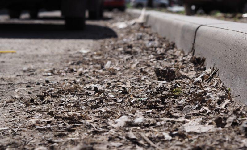 Пыль столбом. Справляются ли коммунальщики с уборкой рыбинских улиц — фоторепортаж