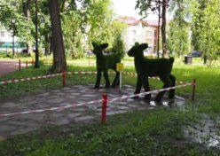 Карякинский парк-2019-4