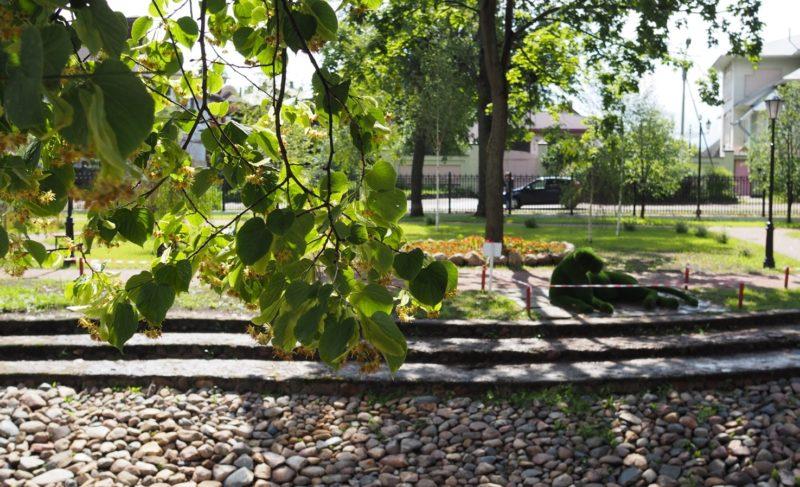 С Карякинского парка сняли статус памятника природы