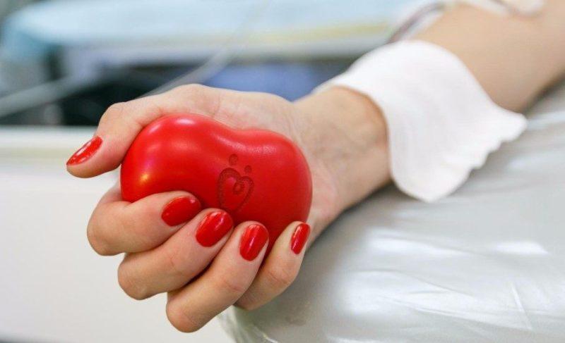 Как стать донором крови и что для этого нужно? Разбор