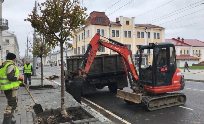 Липы — клёны — липы: в Рыбинске приступили к озеленению Крестовой