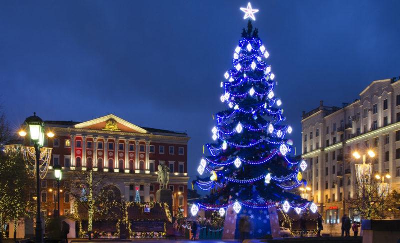 Куда и за сколько дети могут съездить зимой? «Сундук путешествий» организует групповые новогодние экскурсии