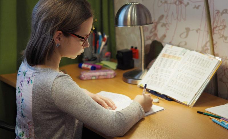 Режим, задания и неработающий сайт. Первый день дистанционной учёбы школьника — личный опыт