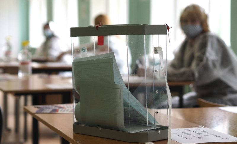 Как в Рыбинске проходит голосование по поправкам к Конституции. Фоторепортаж с избирательных участков