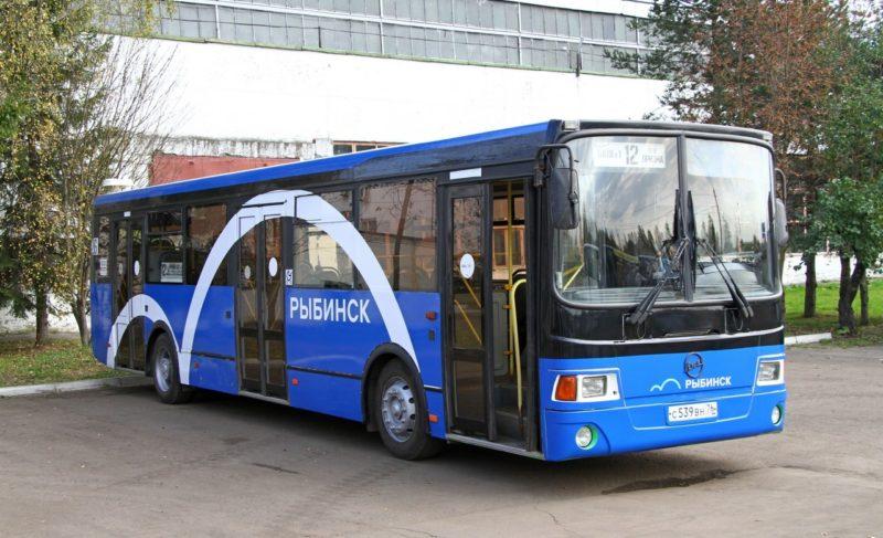 «Всё, что муниципальное, почему-то неработает». Что опроблемах общественного транспорта думают перевозчики иДобряков