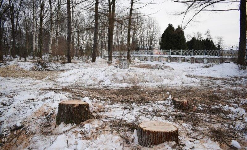 ВВолжский парк придёт «Крепыш». Вадминистрации прокомментировали остановку работ наобъекте изсписка «Решаем вместе»