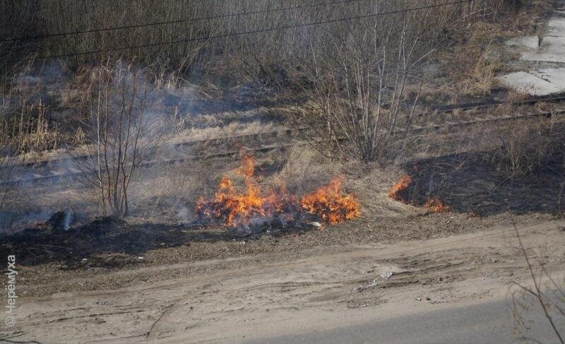 Поджог травы может обернуться штрафом или сроком. Врегионе объявили о начале пожароопасного сезона