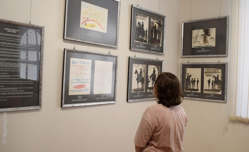 «Песок и кровь». В Рыбинске открылась выставка работ Гойи и Пикассо о корриде. Фото