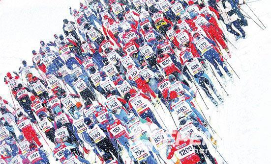 Лыжный марафон в Дёмино соберёт больше полутора тысяч участников